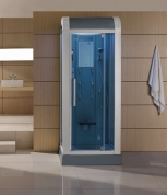 Mesa 502L Steam Shower